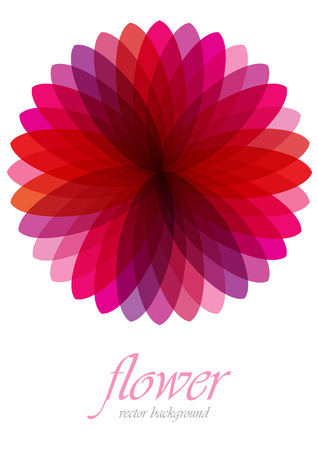 vector background with pink transparent flower Vector