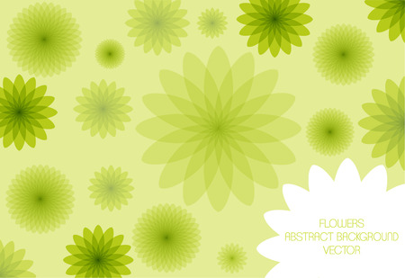 bright vector flowers card