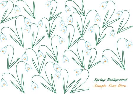snowdrop: snowdrop flowers illustration