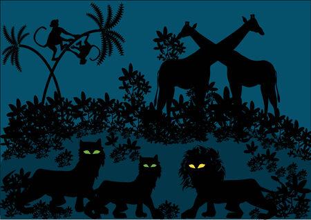 girafe: jungle animals by night Illustration