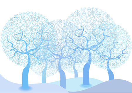 winter scene: winter scene with trees of snowflakes