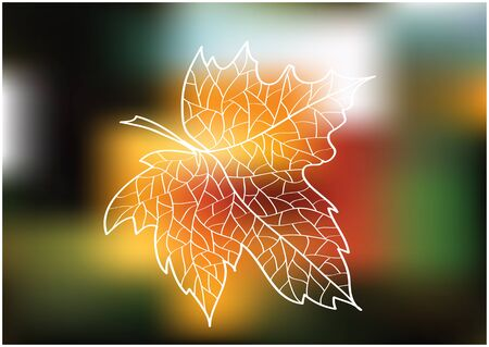 maple leaf silhouette on bright blurry background Vector