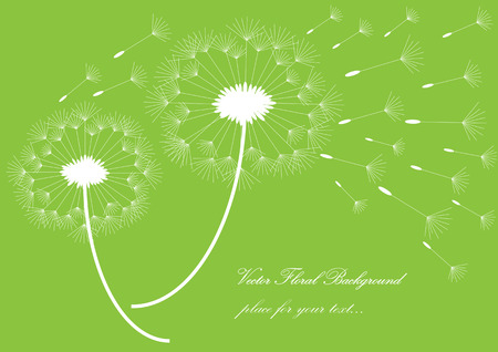 White vector silhouettes of dandelions isolated on green background