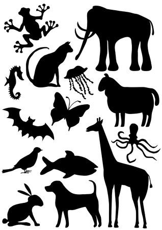collection de grandes silhouettes d'animaux Vecteurs