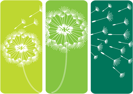 complimentary: color vector background with white dandelion silhouettes Illustration