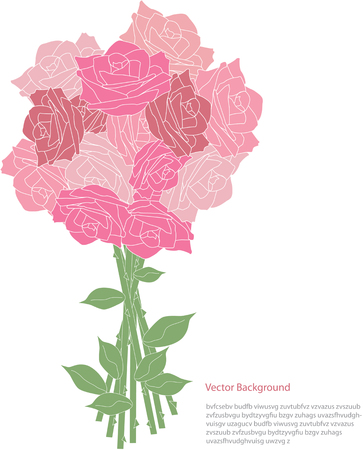 blooming: pink blooming roses,romantic vector card illustration