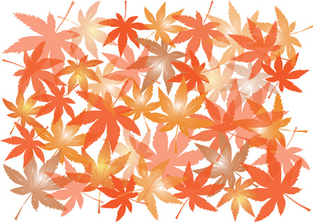 color autumn maple leaves silhouettes isolated on white background