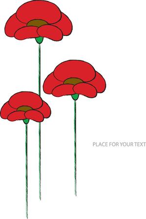 red poppy: red poppy flowers vector illustration