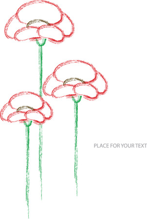 red poppy: red poppy flowers illustration