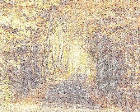 polka dots abstract scene of autumn trees alley Reklamní fotografie