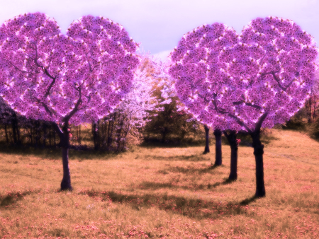 Pink fantastic scene with two hearts trees Stock Photo