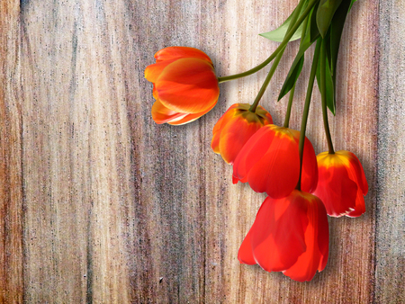color detail of red tulips on wooden table