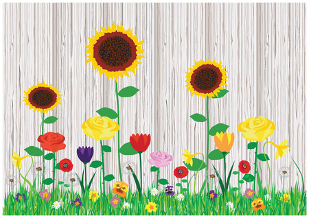 Trendy romantic vector illustration with blooming spring and summer flowers in the garden with wooden textured fence. Beautiful flowers collection.
