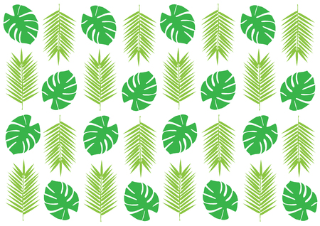 Tropical palm leaves isolated on white background. Green palm leafs silhouettes.