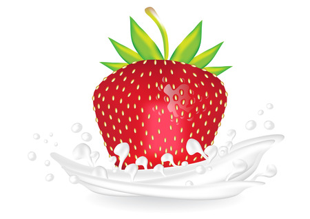 Realistic fresh red strawberry in yoghurt cream. Color vector illustration of red strawberry in milk.