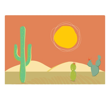 Three cacti in the hot sun