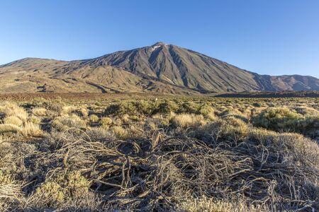 Canary Island, Tenerife. Parque Nacional del Teide