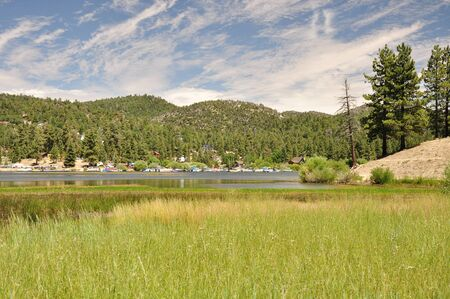 Reeds grow along the waters edge on the north side of Big Bear Lake.
