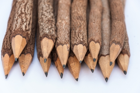 bunch of pencils stylized two branch photo