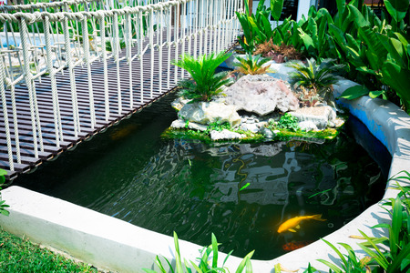 back yard pond: Beautiful classical design garden fish pond in a gardening background and hanging wooden bridge