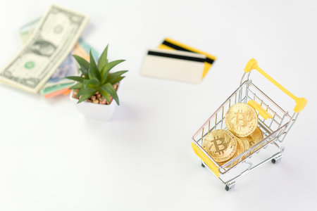 bitcoin in shopping cart  concept online shopping