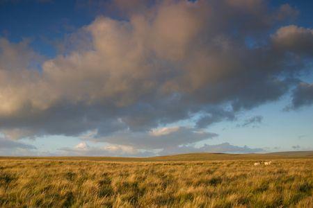 moorland: open moorland Stock Photo