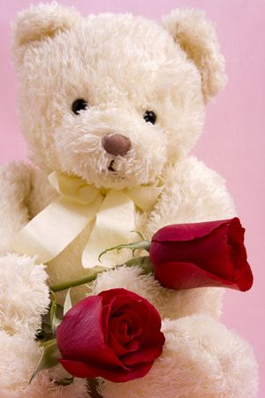 Valentine concept - A beautiful bear with two red roses