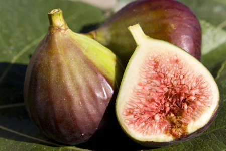 Close up of some figs -  one of them sliced Stock Photo - 10930678