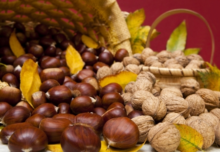Autumn fruit composition with chestnuts and walnuts  photo