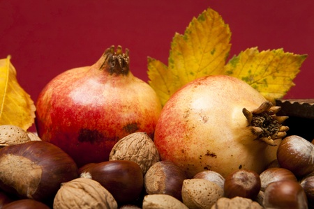 Autumn fruit composition with chestnuts, walnuts hazelnuts, almonds and pomegranates photo