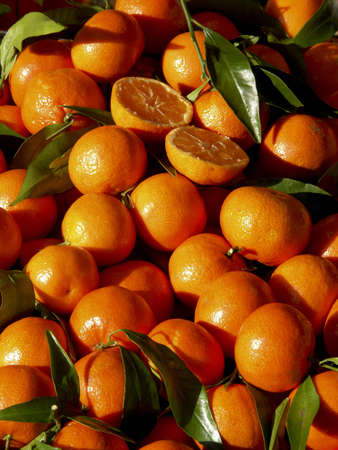 lots of fresh corsica clementine in th market