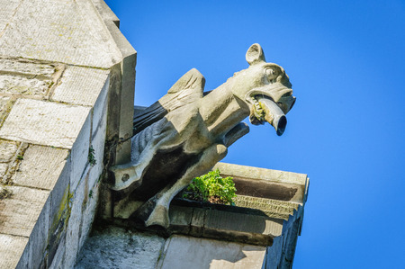 mediaeval: A stone gargoyle on a Welsh church tower on a bright summers day