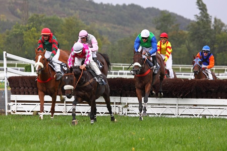 punter: Castera Verduzan, France - October 4, 2010 - The leaders jump a fence during a race at the Baron hippodrome