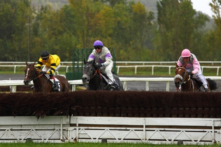 punter: Castera Verduzan, France - October 4, 2010 - The leaders approach a fence during a race at the Baron hippodrome Editoriali