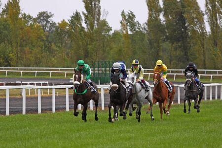 Castera Verduzan, France - October 4, 2010 - Runners and riders during a race at the Baron hippodrome