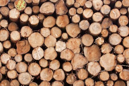 varying: Varying textures of a pile of sawn logs in a timber yard Stock Photo