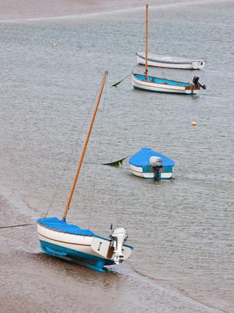 estuary: Sailboats moored in a river estuary