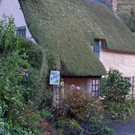 thatcher: Old Exmoor thatched cottage in Somerset, England