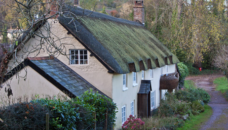 thatcher: Row of traditional thatched cottages in Somerset, England Editorial