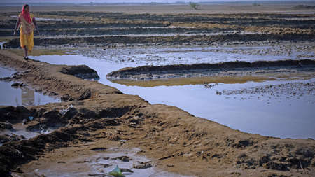 Gujarat, India - November 7, 2016:  Unidentified woman walking between salt pits in the saline desert in the Raan of Kutch. Migrant workers camp in the area for several months to extract the mineral