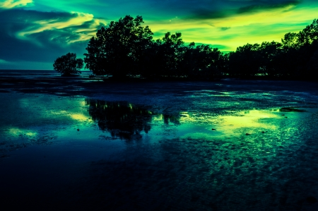 aurora mangrove in sunset Stock Photo