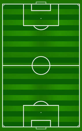 soccer field: A realistic grass football   soccer field  Vector EPS 10  Illustration
