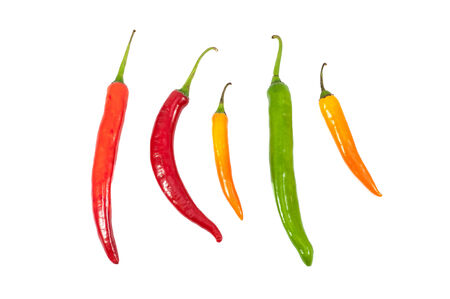 Colorful hot spicy chilli isolated on white background photo