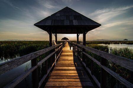 Wooden Bridge in Lotus Lake Under Cloudy Sky at Khao Sam Roi Yod National Park, Thailand. photo