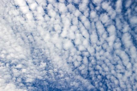 altocumulus: Altocumulus clouds on blue sky : look like a flock of sheep