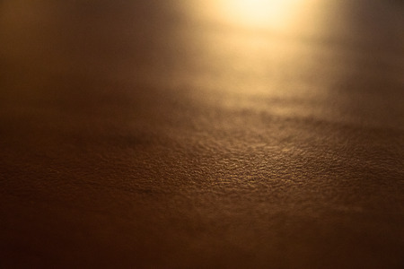 Texture of wood surface with warm shade lighting and copy space for background; soft focus.