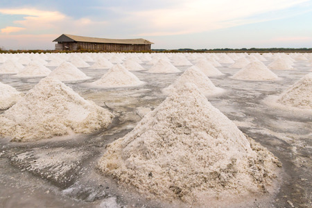 Heap of sea salt in salt farm ready for harvest with beautiful sunset in Samut Songkhram,Thailand. Salt production is made from sea water and sunlight until dry into crystal.
