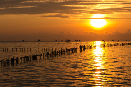 Traditional fisherman sea mussel farming and wooden house along the sea coast with beautiful sunrise background, livelihoods of fishermen in Thailand 版權商用圖片