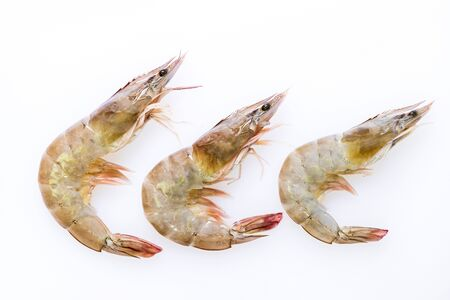 Fresh prawn isolated on a white background.