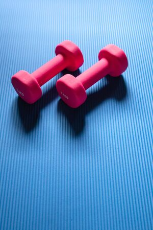 Pink dumbbells on blue yoga mat background. Health care, diet and exercise concept. Copy space